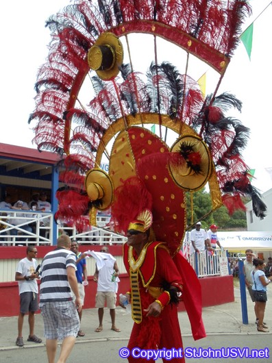 Man Carnival Costume and Head Dress