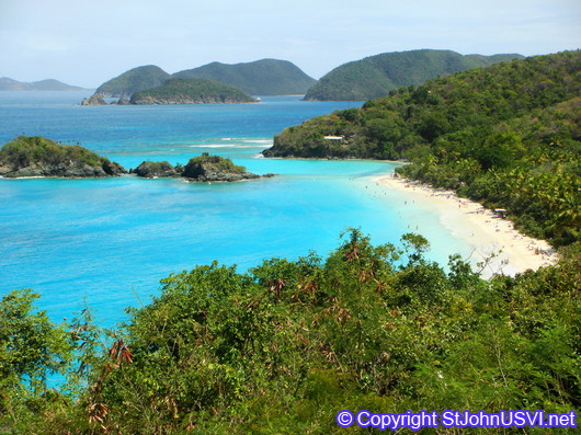 View of Trunk Bay