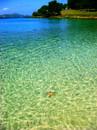 Caneel Bay