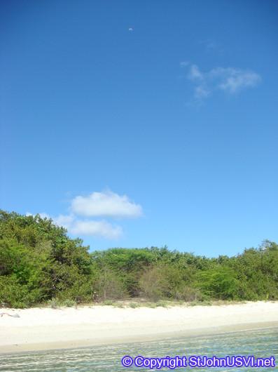 Salt Pond Bay