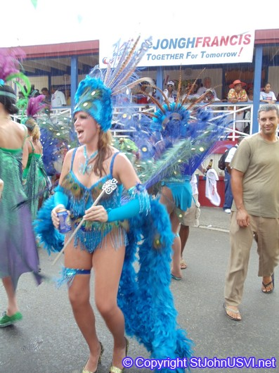 Elaborate Bird Costume for Carnival 2010