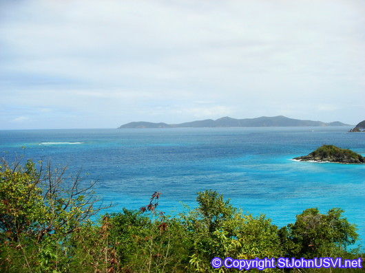 Looking out over Trunk Bay