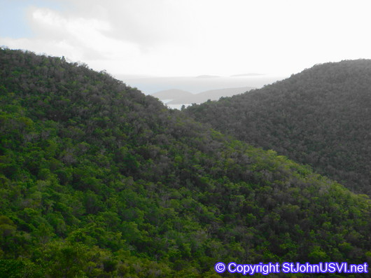 Mountains of St John, USVI