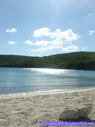 Salt Pond Bay